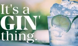 Gin THing new