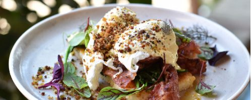Serious-Eggs-Benny-with-free-range-bacon.JPG-1
